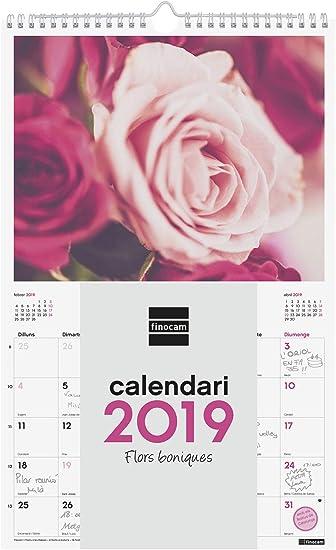 Finocam 780563419 - Calendario de pared 2019: Amazon.es: Oficina y ...