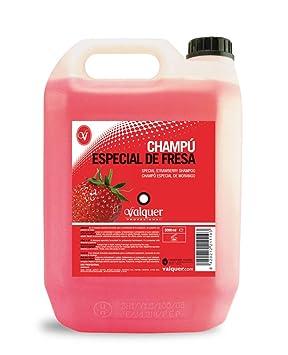 Válquer Champú Especial de Fresa para peluquería. Champú para profesional-5000ML: Amazon.es: Belleza