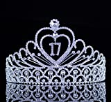 Janefashions 17 Seventeen Years Old Birthday Party Austrian Rhinestone Crystal Tiara Crown With Hair Combs T891 Silver