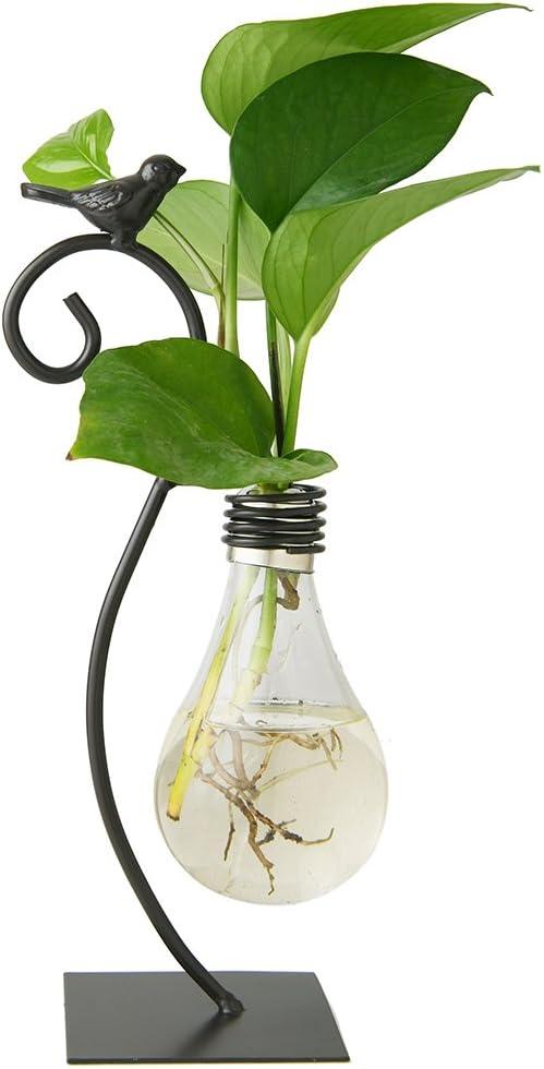 Marbrasse Desktop Glass Planter Hydroponics Vase,Planter Bulb Vase with Holder for Home Decoration,Modern Creative Bird Plant Terrarium Stand, Scindapsus Container (Bulb Vase): Kitchen & Dining