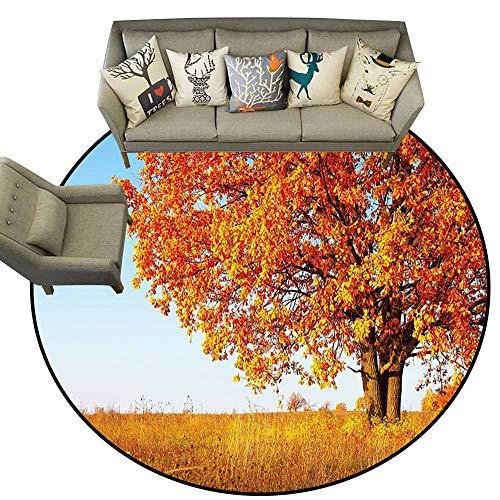 Amazon.com: Alfombra circular, decoración de caídas, oleaje ...
