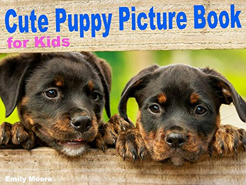 Amazoncom Cute Puppy Picture Book For Kids Adorable Pictures Of
