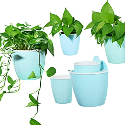 Sungmor Garden 3 Pieces Creative Plastic Hanging Planter, Self Watering Flowerpot, Wall Mounted Plants Holder w/Long Time Water Storage Function (3 Piece Small Pack(13.7cm10.7cm), Color 4-Cyan): Garden & Outdoor