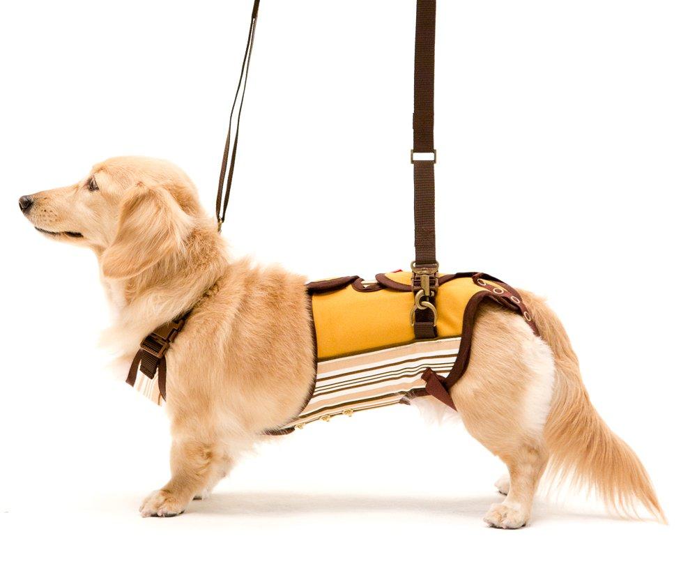With(ウィズ) 歩行補助ハーネス LaLaWalk 小型犬ダックス用 サポーターパッド付 マルチストライプ Mサイズ B01ISNJ9BQ  S S
