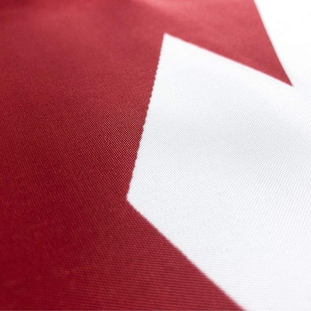 Wgd 3x5 Pies Bandera De La Cruz De Borgoña, del Imperio Español ...