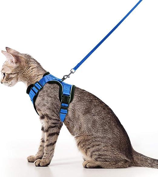 rabbitgoo Arnés para Gatos y Correa 150 cm Cuerda Chaleco Ajustable Antitirones Cómodo Material fácil de Poner y Quitar para Entrenamiento Seguridad Arnes para Perro Conejos Mascotas Pequeño S Azul: Amazon.es: Productos