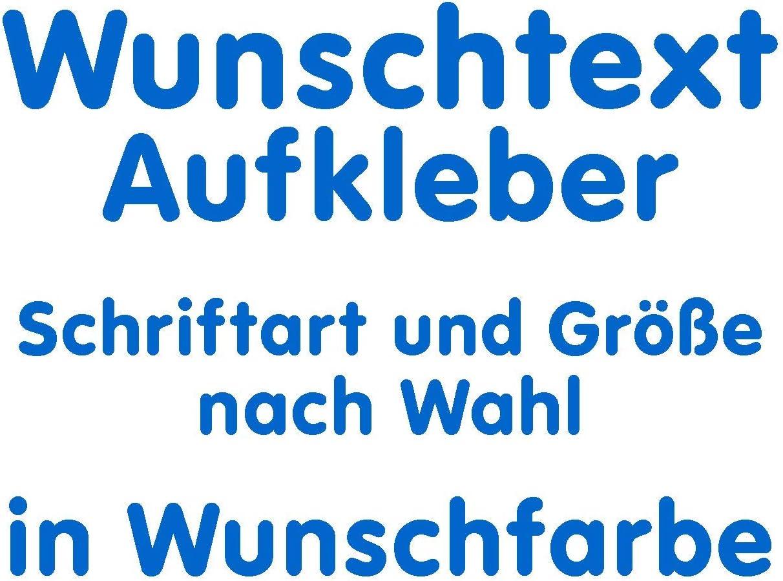 Samunshi/® Aufkleber Autoaufkleber Name Wunschname Sticker Wunschtext Personalisierbar variabel azurblau