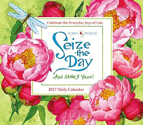 Seize the Day 2017 Boxed/Daily Calendar pdf