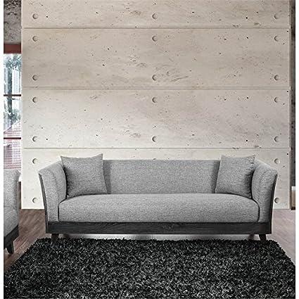 Amazon.com: Furniture of America Tigua Contemporary Sofa in ...