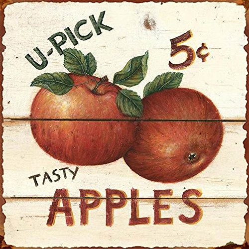 Barnyard Designs Tasty Apples 5 Cents Retro Vintage Tin Bar Sign Country Home Decor 11