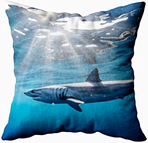 KIOAO 20X20 Pillow Case, Standard 20X20Inch Soft Square Throw Pillowcase Covers Fall Pillow Cover Shark Diving in The Sea of with Coast Cabo San Mexico a Mako Lucas Printed with Both Sides,Halloween