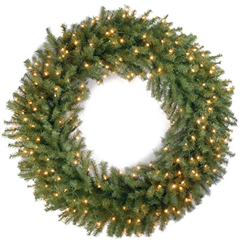 Christmas Wreath Light (National Tree 48 Inch Norwood Fir Wreath with 200 Clear Lights (NF-48WLO))