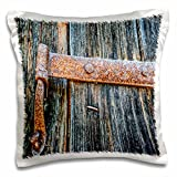 3dRose Print of Ancient Wood Door with Rusty Metal Pillow Case, 16 x 16''