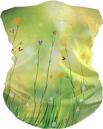 RP Amazing 16 en 1, bandas de sudadera, verde hierba, 12 en 1 ...
