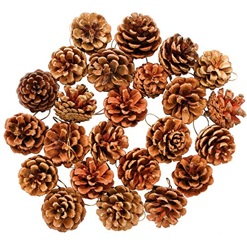 Aneco 24 Pieces Christmas Pine Cones Natural PineCones Ornament with String Pendant Crafts for Gift Tag Tree Party Hanging -