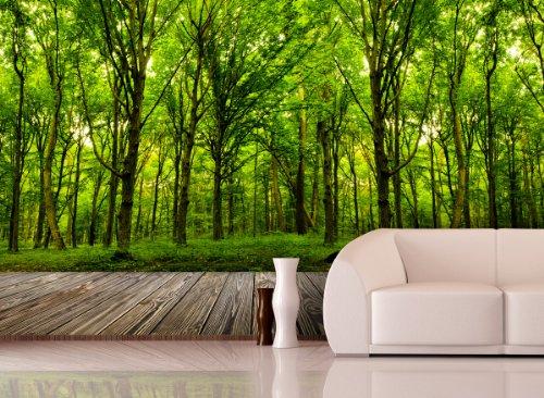 Fototapete Deep Forest in verschiedenen Größen - als Papiertapete oder Vliestapete wählbar - PVC frei, geruchloser, umweltfreundlicher Latexdruck ohne Lösemittel - Motivtapete Postertapete Bildtapete Wall Mural von Trendwände