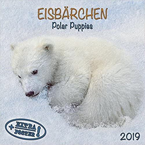 Eisbären - Polar Bears - Ours Polaires 2019. Artwork Edition