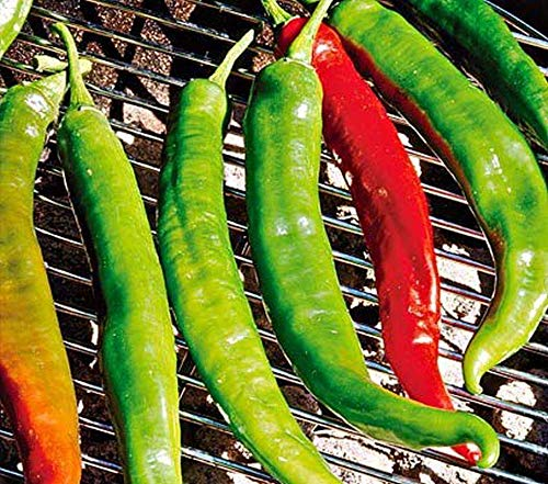 Hot Pepper Italian (Italian Roaster II F1 Hybrid Hot Pepper Seeds (40 Seed Pack))