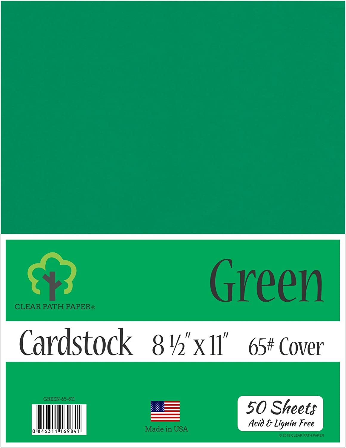 8.5 x 11 inch Spearmint Green Cardstock 50 Sheets 65Lb Cover