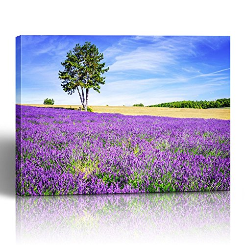 (Emvency Painting Canvas Print Wooden Frame 16