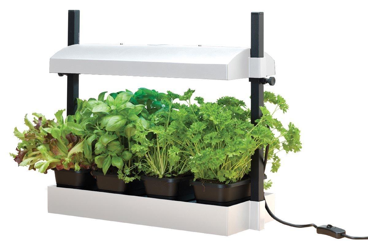 G187 Garland Mikro Wachstums Licht Garten (1 x 11W licht) - Schwarz Garland Products Ltd