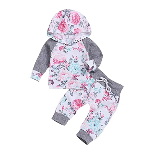 6acd1c27b Toddler Baby Girls 2Pcs Clothes Sets for 0-24 Months,Fashion Lovely Long  Sleeve