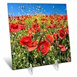 3dRose Danita Delimont - Flowers - Spain, Andalusia. A field of bright and cheerful red poppy wildflowers - 6x6 Desk Clock (dc_277891_1)
