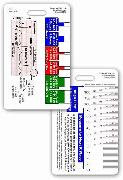 Amazon.com: Regla vertical, guía de referencia ECG ...