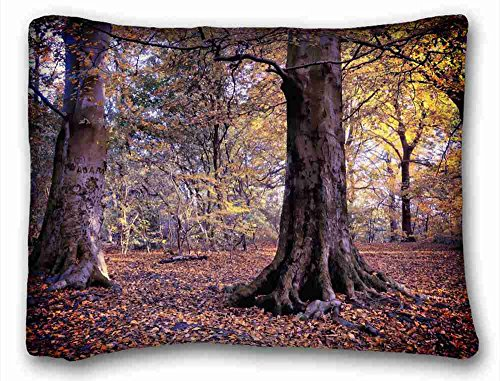 """Price comparison product image Custom ( Landscapes autumn trees forest landscape ) Pillowcase Cover 20""""X26"""" One Side suitable for King-bed"""
