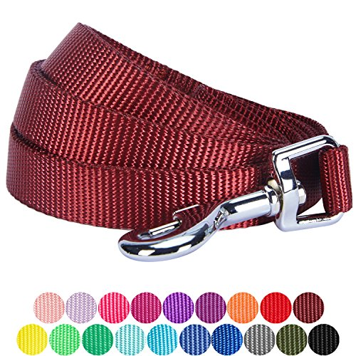 Blueberry Pet 19 Colors Durable Classic Dog Leash 5 ft x 3/4'', Fired Brick, Medium, Basic Nylon Leashes for Dogs by Blueberry Pet
