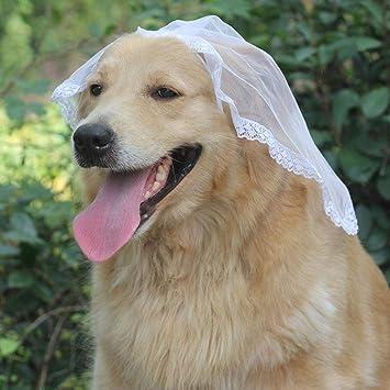 Traje de esmoquin para perro Traje de mascota Vestido de novia ...