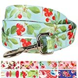 Blueberry Pet Durable The Cherry Garden Turquoise Designer Dog Leash 6 ft x ...