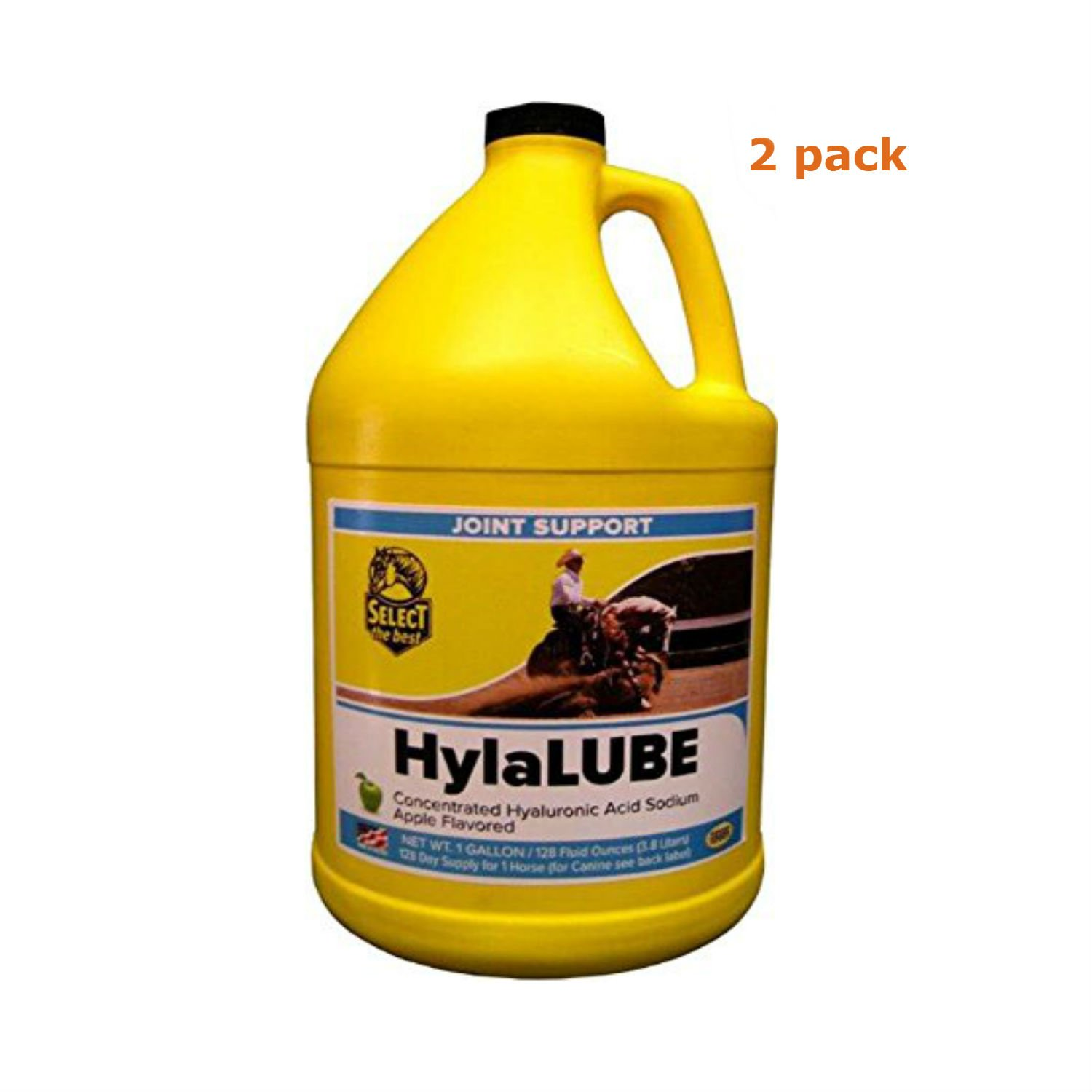 RICHDEL Select The Best HylaLUBE - Pack of 2