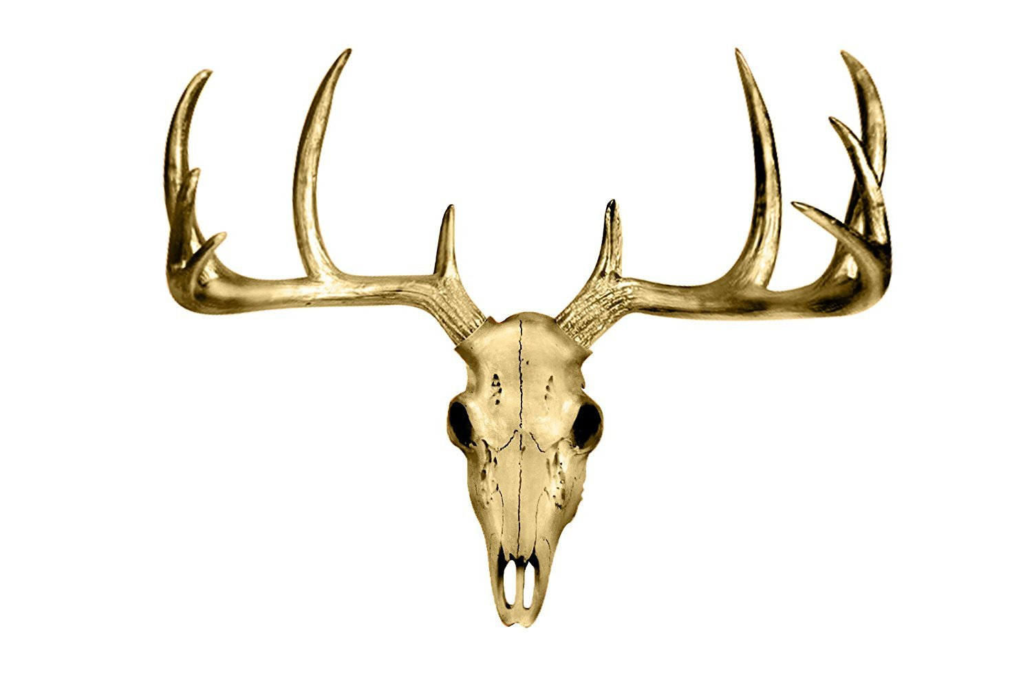 Wall Charmers Large Faux Deer Skull | Room Decor Wall Art| Hand Finished Home Decor, Farmhouse Decor, Bedroom Decor, Bathroom Decor, Office Decor, Rustic Wall Decor, Rustic Home Decor Accents