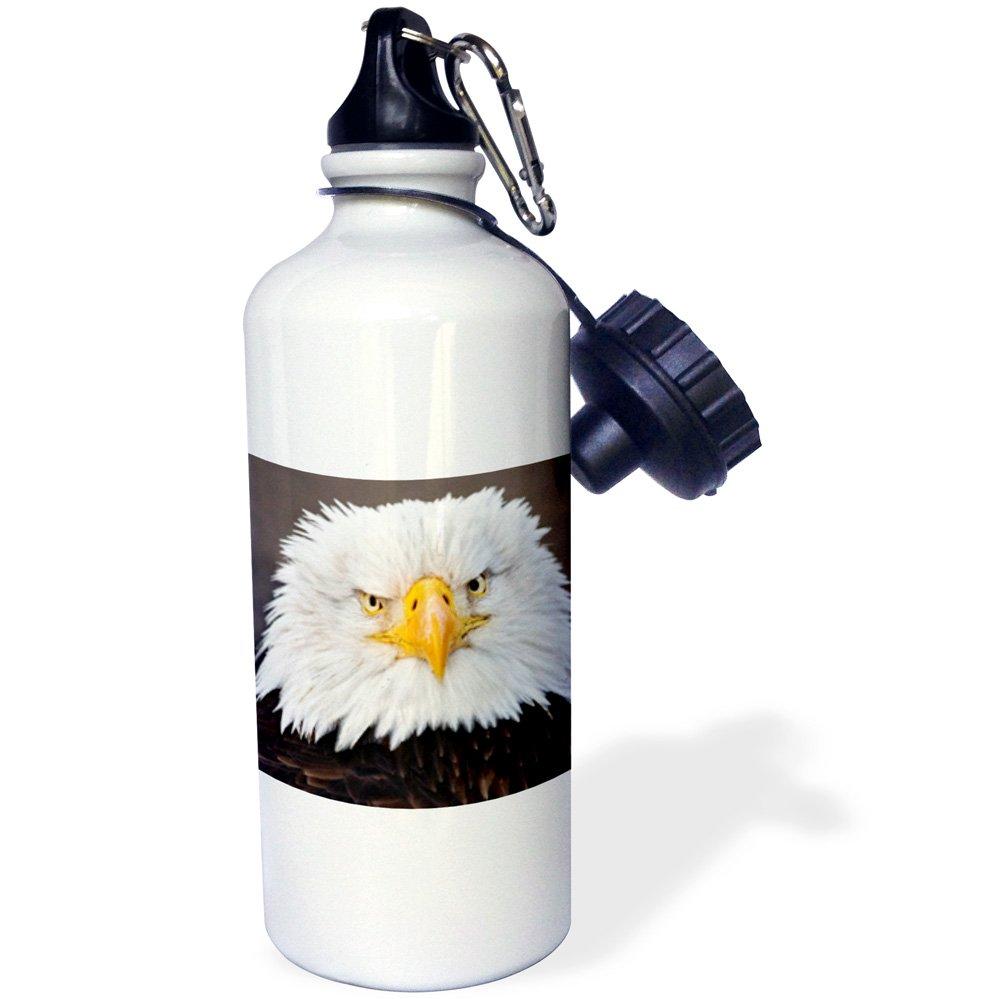 21 oz White Alaska-US02 AJE0019-Adam Jones-Sports Water Bottle Homer 3dRose wb/_87324/_1 Bald Eagles