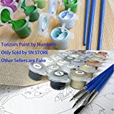 Tonzom Paint by Number Kits 16 x 20 inch Canvas DIY Oil Painting for Kids, Students, Adults Beginner with Brushes and Acrylic Pigment - Our Romance Under Umbrella
