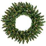 Vickerman Clear Dura-lit Lights Frosted Bellevue Alpine Artificial Christmas Wreath, 20-Inch