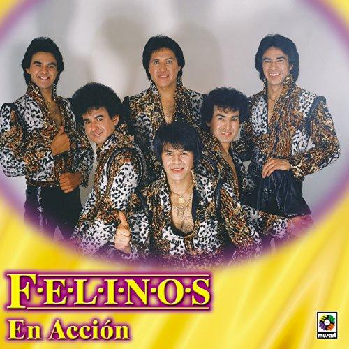 Felinos Stream or buy for $9.49 · Felinos En Accion