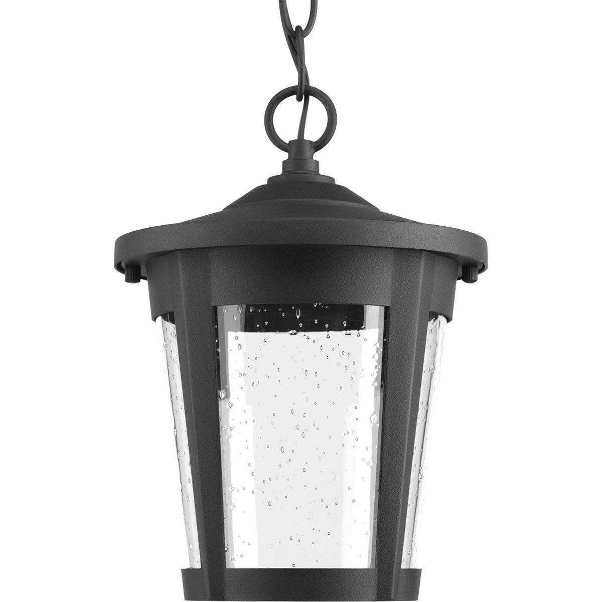 Progress Lighting P6530-3130K9 Contemporary/Soft 1-9W Led Hanging Lantern, Black