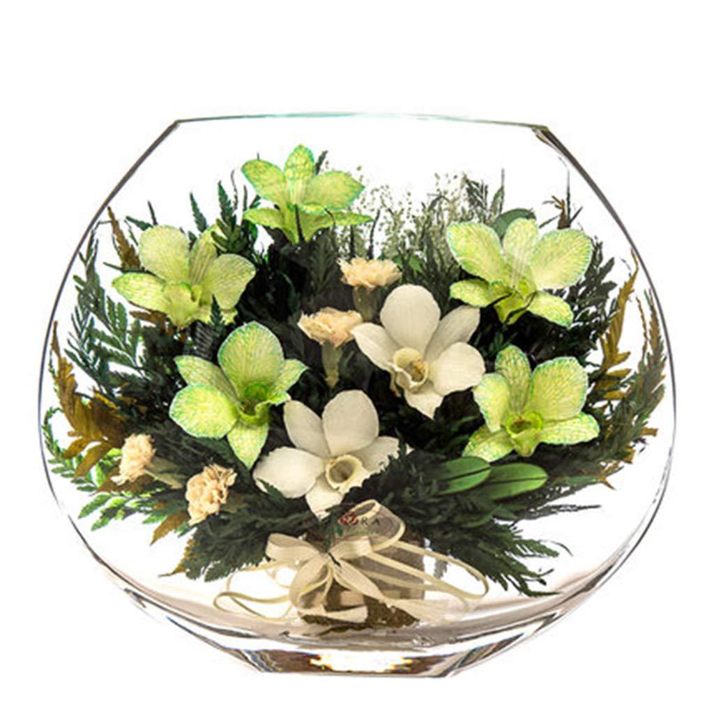 Old.Seller 永遠の花の真空永遠の花半球の新鮮な蘭の室内の花 - 造花 3589 B07SSX3MZ5