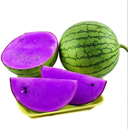 10 pcs Imported vegetable Seeds mini white Cucumber