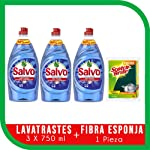 Salvo Salvo Power Clean Lavatrates Líquido Concentrado 750ml 3 Unidades, Total 2.25lts + Esponja, Pack of 1