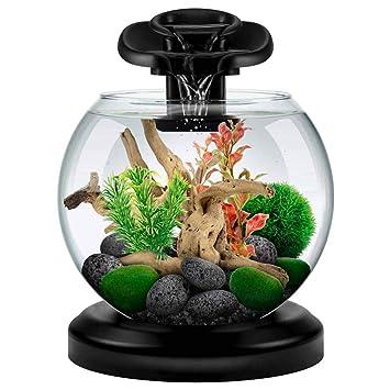 Tetra Acuario Duo Waterfall Globe de 6,8L Negro: Amazon.es: Productos para mascotas