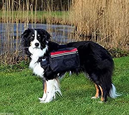 Trixie Mochila para Perros, L, 28x18 cm, Negro: Amazon.es: Productos para mascotas