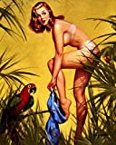 "Vintage Gil Elvgren Pinup Girl Fabric Cloth Rolled Wall Poster Print -- Size: (16"" x 13"")"
