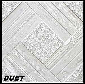 10 m2 paneles de techo paneles de poliestireno enchufe for Placas de poliestireno para techos precios