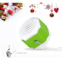 Flysight Portable Bluetooth Speaker with 4.2 EDR,AUX Audio Input Built-in Battery Smartphones for Apple/Android Phone(Single-Green)