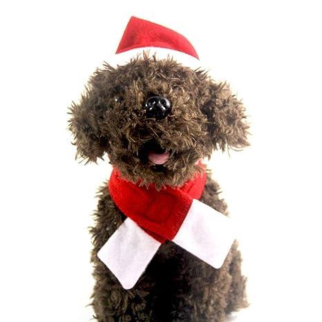 BESTOYARD Juego de Bufanda y Gorro de Santa para Mascotas Cachorro Gatito Disfraz de Navidad Accesorios