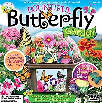 Amazon.com  Toys By Nature Grow Your Own Butterfly Garden