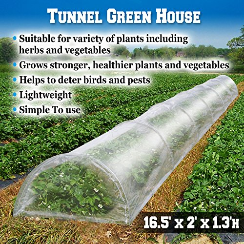 Grow Tunnel - 4